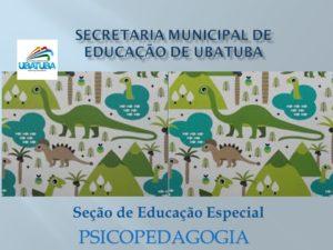 Educação Especial – Psicopedagogia – E.F. 4º e 5º anos