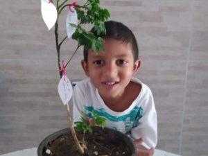 EM Carpinetti cria a Árvore do Desejo com alunos, professores e funcionários