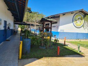 EM Simeão revitaliza sua biblioteca durante período de pandemia